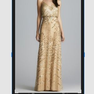 Never Been Worn Adrianna Papell Gown